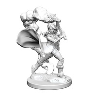 Pathfinder Deep Cuts Unpainted Miniatures Human Female Cleric