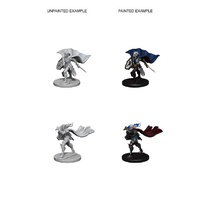 Pathfinder Deep Cuts Unpainted Miniatures Elf Female Paladin
