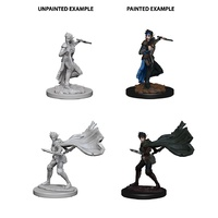 Pathfinder Deep Cuts Unpainted Miniatures Elf Female Rogue