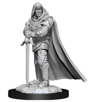 Dungeons & Dragons Nolzurs Marvelous Unpainted Miniatures Human Male Paladin
