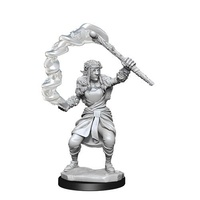 Dungeons & Dragons Nolzurs Marvelous Unpainted Miniatures Firbolg Female Druid