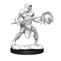 Dungeons & Dragons Nolzurs Marvelous Unpainted Miniatures Male Multiclass Fighter + Wizard