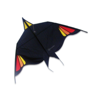 Dida Kites Ostend Bird 100 Kite