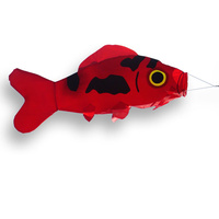 Didikites Koi Fish Wind Sock