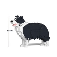 Jekca Border Collie 01C-M01