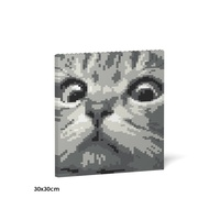 Jekca Cat Eyes Brick Painting 02S-M02