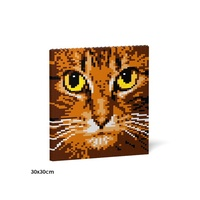 Jekca Cat Eyes Brick Painting 04S-M01