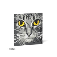 Jekca Cat Eyes Brick Painting 04S-M02
