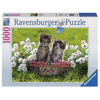 Ravensburger - 1000pc Picnic in the Meadow Jigsaw Puzzle 19480-3